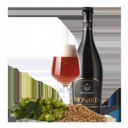 Birra Artigianale Monasta