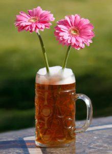birra e piante