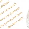 come ordinare birra all'estero bottiglia e frasi