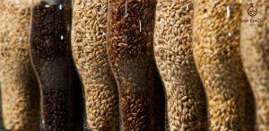 luppolo birra cereali