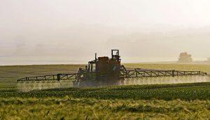 birra biologica pesticidi