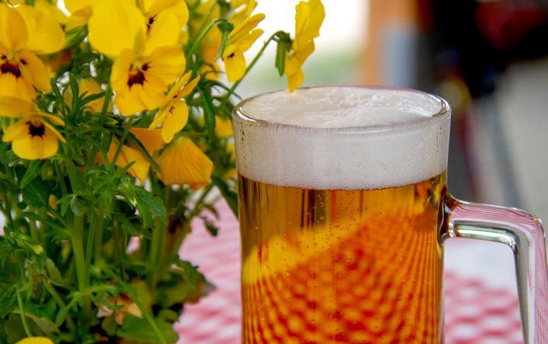 come fare birra artigianale in casa birra sul tavolo